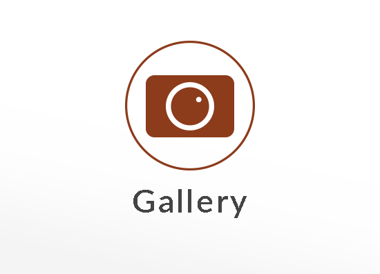 Picture Gallery Button